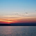 Sonnenuntergang fotografieren am Meer